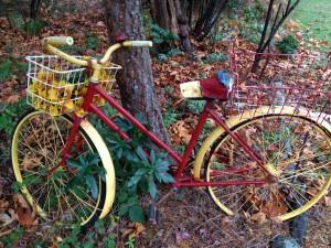 Bike leaning on a tree