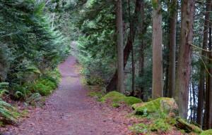 Path at Sandwell Beach