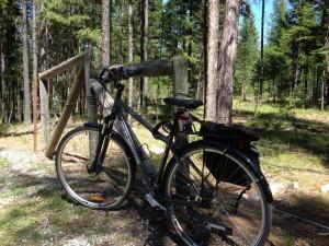Bike on fence IMG_0337