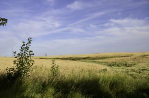 Beatiful prairies and sky